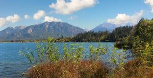 摄影高山湖barmsee,与芦苇的湖岸 免版税库存照片
