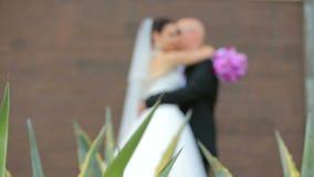 摆在一个假日的新婚佳偶 股票视频