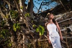 摆在一个石墙上的热带树中间的性感的新娘 库存图片