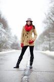 摆在一条路的美丽的妇女在冬天 库存图片