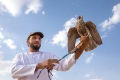 摆在与他的人训练了猎鹰 图库摄影