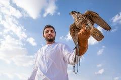 摆在与他的人训练了猎鹰 库存图片