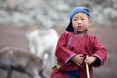 摆在与他的家庭` s驯鹿的小tsaatan男孩 免版税库存照片