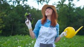 摆在与夏南瓜植物和注视着的微笑的女性花匠照相机,农厂的和从事园艺的概念 股票录像