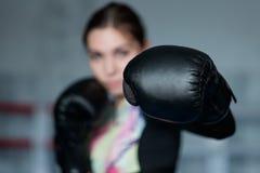 摆在与手套的年轻成人性感的拳击女孩 库存照片