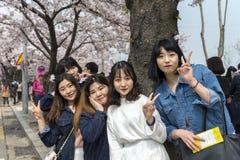 摆在与樱花的一个小组时髦女孩开花背景 免版税库存图片
