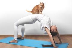 摆在与猫的瑜伽的美丽的少妇 健身和pilates 免版税图库摄影