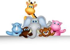 摆在与空白的标志的逗人喜爱的野生动物动画片 免版税库存图片