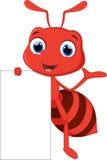 摆在与空白的标志的滑稽的蚂蚁动画片 库存图片