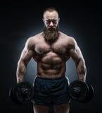 摆在与重的哑铃的有胡子的肌肉爱好健美者 免版税库存照片