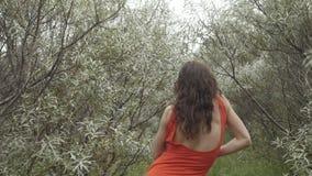 摆在为在草丛的照相机的妇女 股票视频