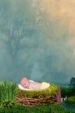 摆在为照相机的逗人喜爱的矮小的新出生的男婴 库存图片