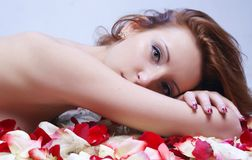 摆在以玫瑰花瓣为背景的美丽的女孩 库存照片