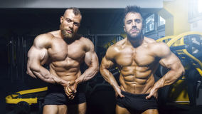 摆在健身房的两个男性爱好健美者 免版税库存照片
