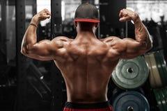 摆在健身房,显示和二头肌的背面图肌肉人 强的男性赤裸躯干,解决 免版税库存照片