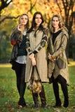 摆在公园的三个年轻美好的时装模特儿 免版税库存图片