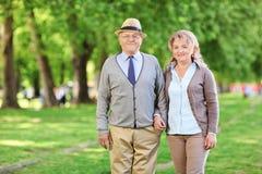 摆在公园的成熟夫妇 免版税库存照片