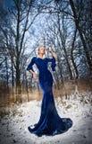 摆在冬天风景,皇家神色的典雅的蓝色礼服的可爱的小姐 有森林的时兴的白肤金发的妇女在背景中 库存照片