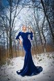 摆在冬天风景,皇家神色的典雅的蓝色礼服的可爱的小姐 有森林的时兴的白肤金发的妇女在背景中 免版税库存图片