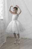 摆在古典芭蕾舞短裙的逗人喜爱的矮小的芭蕾舞女演员 库存照片