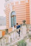 摆在台阶的美好的年轻婚姻的对在公园 在背景的浪漫葡萄酒大厦 免版税库存图片