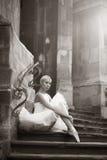 摆在台阶的年轻芭蕾舞女演员妇女 库存照片
