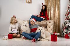摆在和微笑与狗的sweeters的年轻时髦的人在圣诞树附近 免版税库存图片