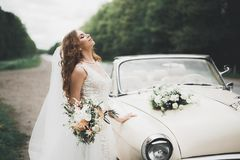 摆在她的除草天的减速火箭的汽车的愉快的新娘 免版税库存照片