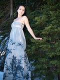 摆在妇女的美丽的礼服森林 库存照片
