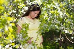 摆在开花的樱桃庭院里的美丽的孕妇 免版税图库摄影
