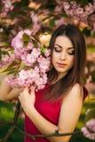 摆在摄影师的美丽的女孩以开花的桃红色树为背景 春天 佐仓 免版税图库摄影