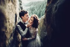摆在日落的浪漫新婚佳偶夫妇在庄严大鹏点燃 图库摄影