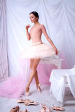 摆在桃红色的专业跳芭蕾舞者 库存照片