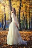 摆在桦树森林的美丽的妇女 库存照片