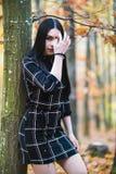 摆在森林里的一个美丽和典雅的浅黑肤色的男人在aut期间 库存照片