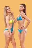 摆在橙色背景的游泳衣的两名性感的妇女 理想的机体 比基尼泳装夏天广告概念 库存图片