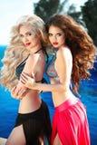 摆在泳装的美丽的性感的妇女 与长期的比基尼泳装模型 库存照片
