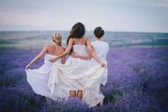 摆在淡紫色领域的三名妇女 免版税库存照片