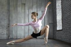 摆在演播室的芭蕾舞女演员 库存图片