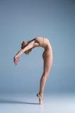 摆在演播室背景的年轻美丽的现代样式舞蹈家 库存照片