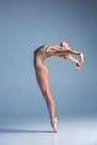 摆在演播室背景的年轻美丽的现代样式舞蹈家 库存图片