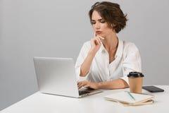 摆在灰色墙壁背景的严肃的女商人坐在桌上使用膝上型计算机 免版税库存照片
