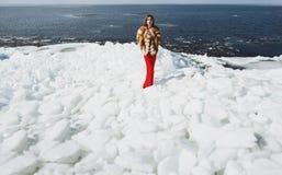 摆在礼服的妇女在冬时 图库摄影
