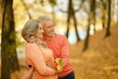 摆在秋天公园的老夫妇 免版税库存照片