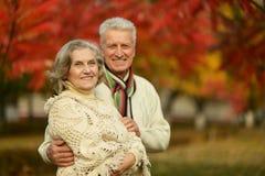 摆在秋天公园的老夫妇 免版税图库摄影