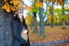 摆在秋天森林里的美丽的孕妇画象  库存图片