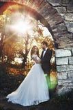 摆在童话浪漫valentyne新婚佳偶的夫妇拥抱和 免版税库存照片