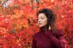 摆在红色autumnn灌木的照相机的红色sweather的年轻黑发妇女 库存图片