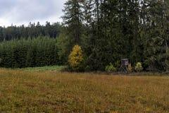 摆在草甸的猎人在森林附近在一棵五颜六色的秋天树旁边 免版税图库摄影
