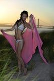 摆在设计比基尼泳装和拿着桃红色海滩的美好的时装模特儿在日落时间掩盖 免版税库存照片